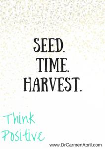Seed Tme Harvest